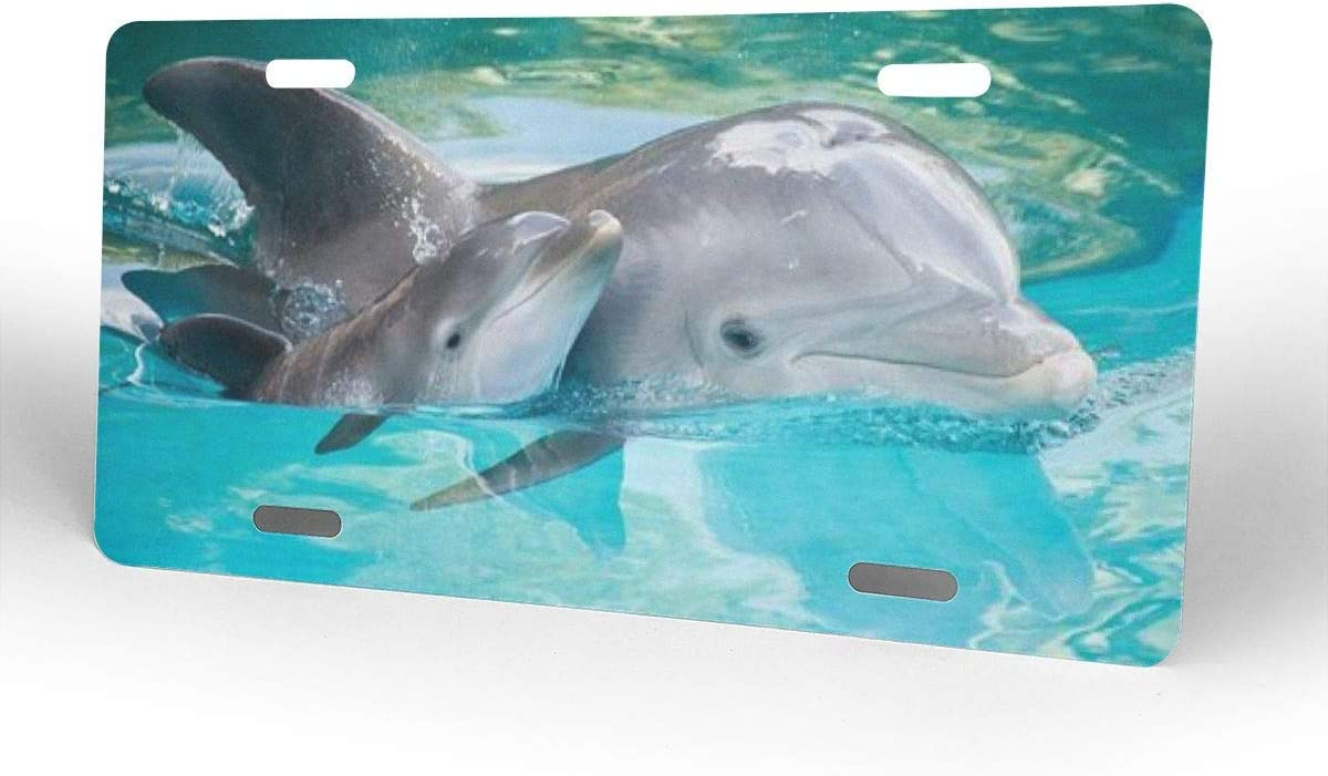 others License Plate Baby Dolphin Swimming License Plate Decorated Front Panel 12 X 6