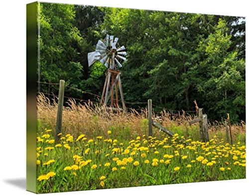 Wall Art Print entitled Windmill And Flowers by James Eddy
