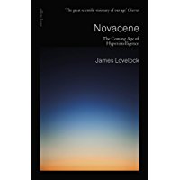 Novacene: The Coming Age of Hyperintelligence (English Edition)