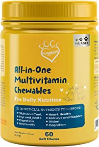 All-in-1 Dog Multivitamins and Supplement | Fish Oil, Iron, Calcium, Vitamin E, C & B12 | Joint, Immune, & Vision Support | All Natural Chewable Dog Multivitamin, Multivitamin for Dogs – Huggibles