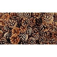 1 kg de piñas naturales de 3-5 cm