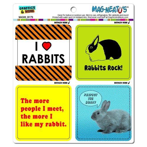 Graphics and More Bunny Rabbit Love Mag-Neato's Automotive Car Refrigerator Locker Vinyl Magnet Set