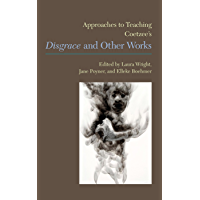 Approaches to Teaching Coetzee's Disgrace and Other Works (Approaches to Teaching World Literature Book 130) (English Edition)