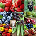 Vegetable Seeds & Fruit Seeds Combo Pack (Organic) 1,270+ Seeds UPC 650327337312 Self Fertile + 8 Free Plant Markers Cucumber Huckleberry Mulberry Bell Pepper Blackberry Raspberry Apple Strawberry
