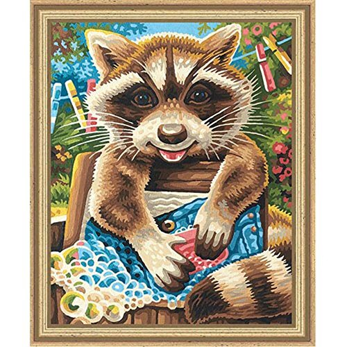 Schipper Raccoon Paint by Number