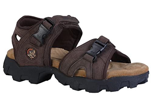 2eb599938a93 Woodland Men s Sandals  Buy Online at Low Prices in India - Amazon.in