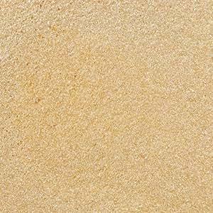 Wilton Pearl Dust, Gold-0.05 Ounce (1,4g)