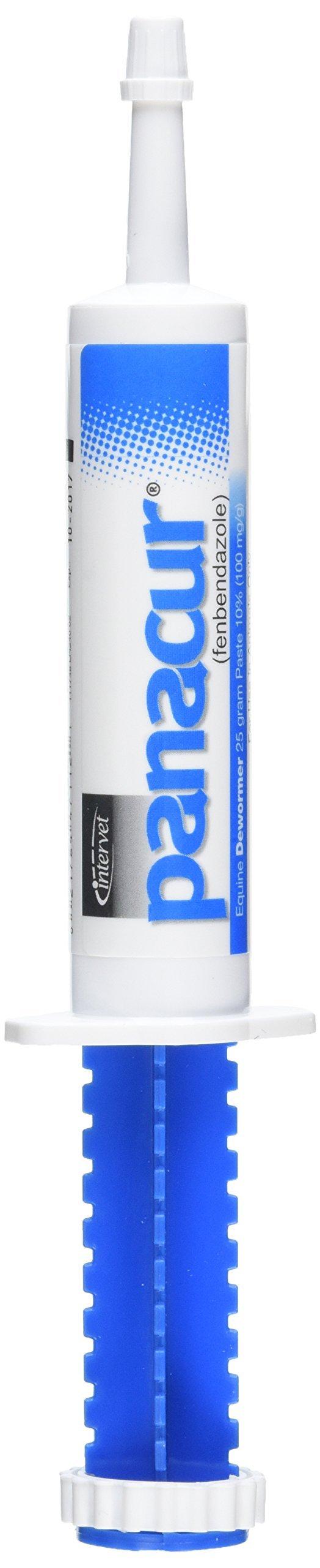 PANACUR DewormerHORSEPASTE10%, 100mg by SCHERING/INTERVET D