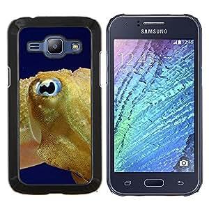 "Be-Star Único Patrón Plástico Duro Fundas Cover Cubre Hard Case Cover Para Samsung Galaxy J1 / J100 ( Fish Blue Eye Golden Ocean Swim Blue Sea"" )"