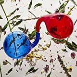 Buy Dirty Projectors – Lamp Lit Prose New or Used via Amazon