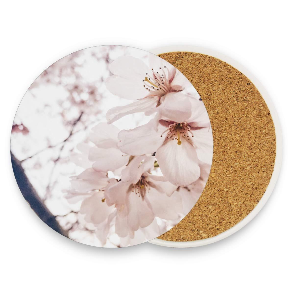 MALPLENA Dessous de Verre Sakura Transparent Taille L 8,9 cm Convient à toutes les tasses Maison Cuisine Décoration Idée Cadeau, Bois, 1, 4 pieces set