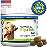 Best Glucosamine Chondroitin MSM For Dogs - Vitamin C & E, Turmeric – Hip & Joint Supplement Advanced Canine Care – Help Relieve Arthritis, Hip Pain, Dysplasia, Mobility – Made In USA, 120 Soft Chews