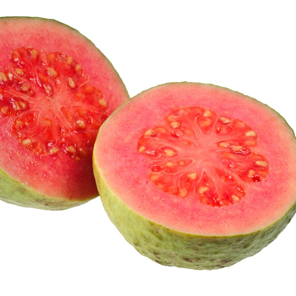 Guava Barbie Pink Psidium guajava LIVE FRUITPLANT