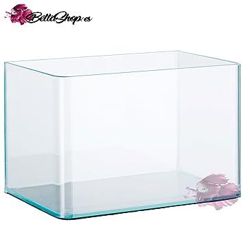 ES ACUARIOS DE Cristal con Frontal Curvo Varios TAMAÑOS!!! (41): Amazon.es: Productos para mascotas