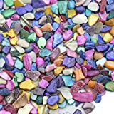 MS 600Pcs/200g Mosaic Tiles Home Decoration Art & Crafts Mixed Color shells
