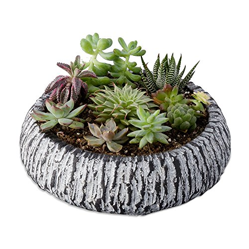 Concrete Round Planter - 4