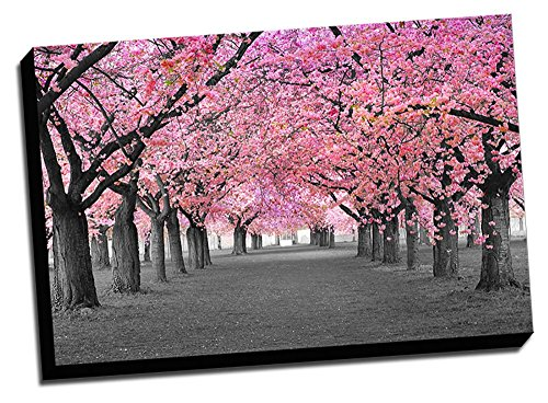 Blossoms Decoration Printed Canvas Stretched