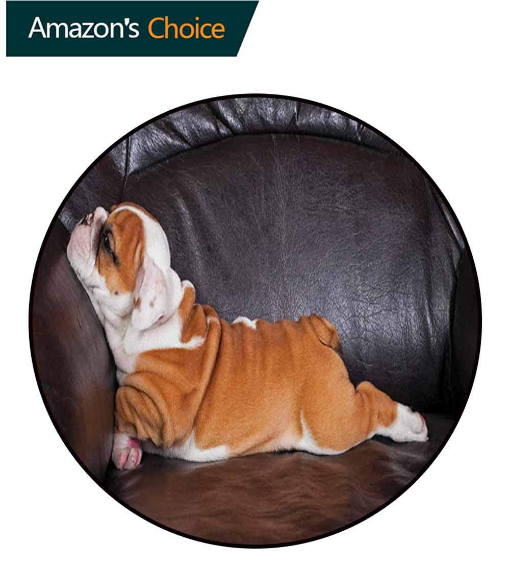 RUGSMAT English Bulldog Round Area Rugs,Puppy Resting On A Sofa Funny Animal Photography Cute Canine Super Soft Living Room Bedroom Home Shaggy Carpet,Diameter-59 Inch Seal Brown White Brown