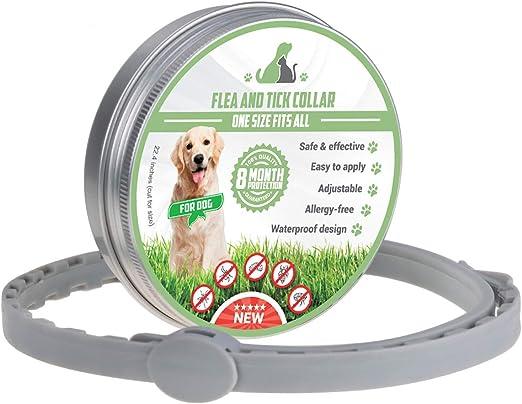 MENGZF Collar Antiparasitario para Perros y Gatos,Collares ...