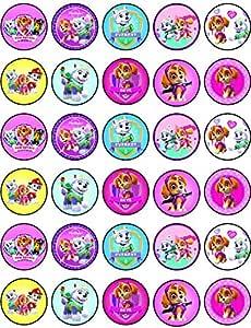 Edible Cake Topper OR Cupcake Topper PAW PATROL GIRLS Decor