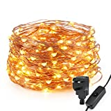 LED String Light Waterproof Copper Wire Fairy Starry Lights 200 LEDs 20M/65 ft Firefly Lights Warm White Garden Patio Party Valentine's Day Wedding Christmas Tree Outdoor Decoration Bedroom [Energy Class A+]