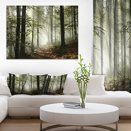 Light in Dense Fall Forest with Fog Landscape Art Print Canvas 1' Framed Art Print