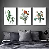 Green leaves Plants and flowers modern Home art
