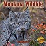 2019 Montana Wildlife Wall Calendar