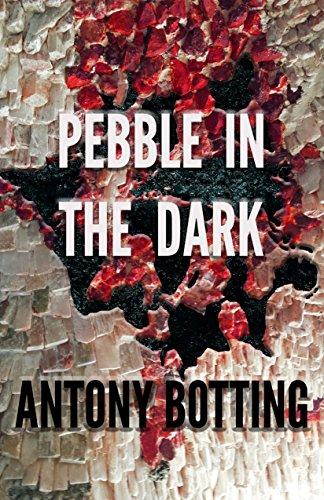 Pebble in the Dark by Antony Botting