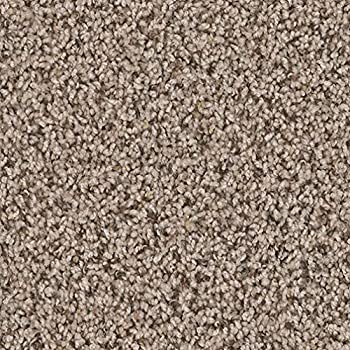 Dream Weaver (Bound) Oyster Bay Indoor Frieze Area Carpet