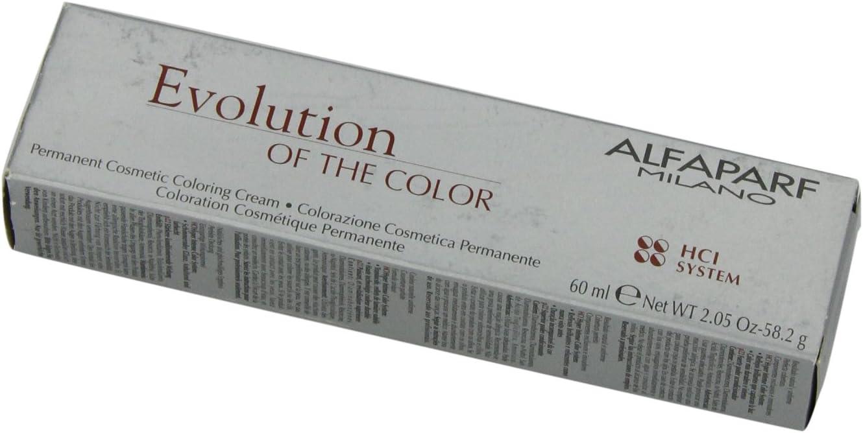 AlfaParf Evolution Tinte 1010 Ss - 60 ml: Amazon.es: Belleza