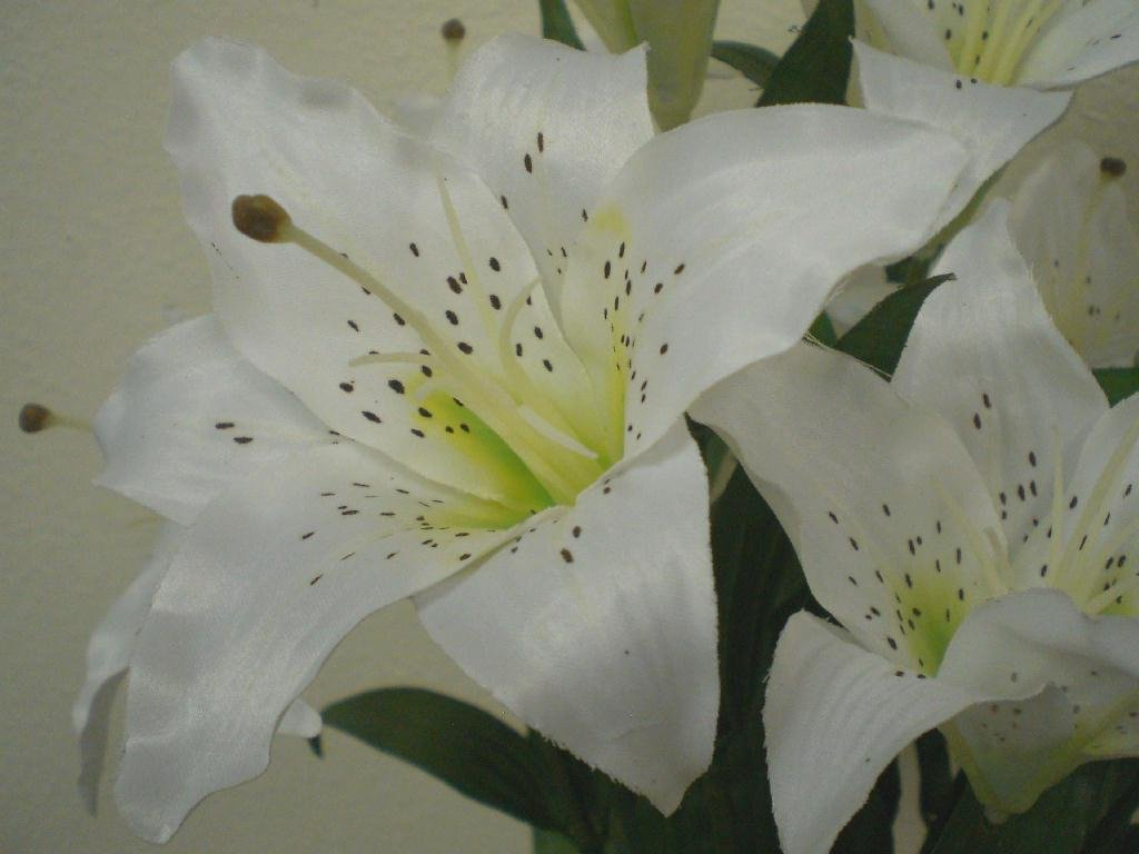 Amazon 1 x white large tiger lily 9 silk flowers bush bouquet amazon 1 x white large tiger lily 9 silk flowers bush bouquet artificial home kitchen izmirmasajfo Gallery