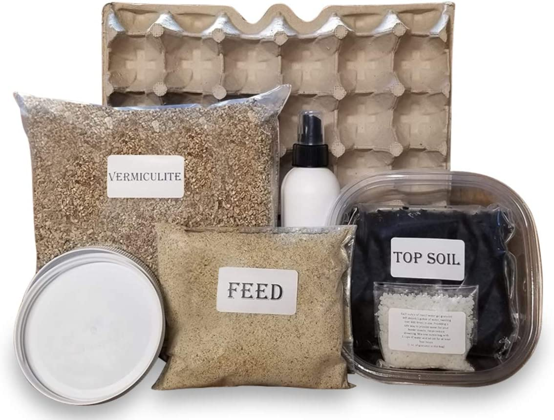 Cricket Colony Starter Kit for Feeder Crickets- 6-Egg Flats, Vermiculite, Top Soil, 1/2 LB Feed Sample, 1- Packet of Water gel, Spray Bottle, Container, and 2 Lids (Cricket Starter Kit)