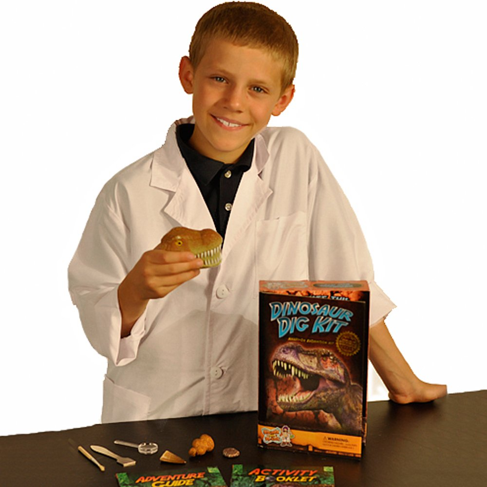 Dig Up and Collect 3 Real Dinosaur Fossils! Dinosaur Dig Science Kit