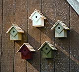 Heartwood 087A Summer Home Decorative Bird House