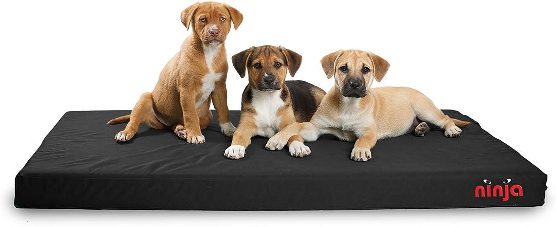 Amazon.com: Dog Gone Smart Pet Products Repelz-It Cama ninja ...
