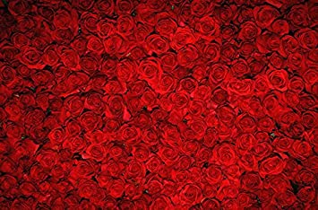 7x5 ft red rose valentines day backdrops photography flower wall photo studio background ft0003 - Valentines Backdrops