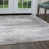 Christian Siriano Designer Area Rugs: Brooksville 6273-999 Gray Multi Contemporary Vintage Floral Rug: 7' 9'' x 10' 2'' Rectangle