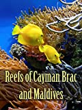 Reefs of Cayman Brac and Maldives