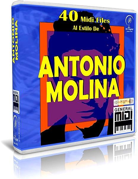 Antonio Molina - Pendrive USB OTG para Teclados Midi, PC ...