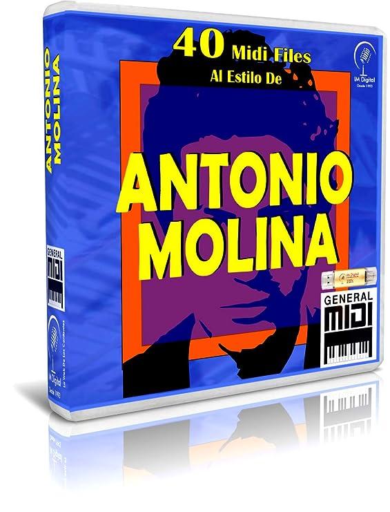 Antonio Molina - Pendrive USB OTG para Teclados Midi, PC, Móvil, Tablet, Módulo o Reproductor Midi Que utilices: Amazon.es: Electrónica