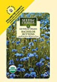 Seeds of Change S11051 Certified Organic Bachelor
