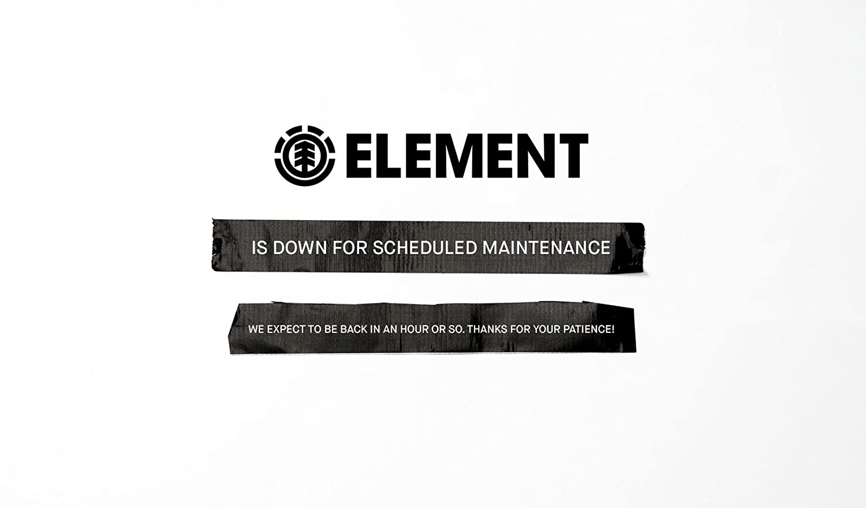 Element Mens Ea Trucker Cap