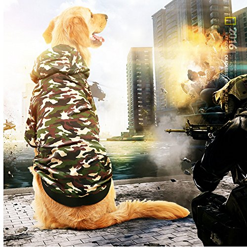 [Big Dog Camo Clothes Warm Winter Coat Jacket Clothing for Dogs Large Size Golden Retriever Labrador] (Scoobydoo Adult Plus Costumes)