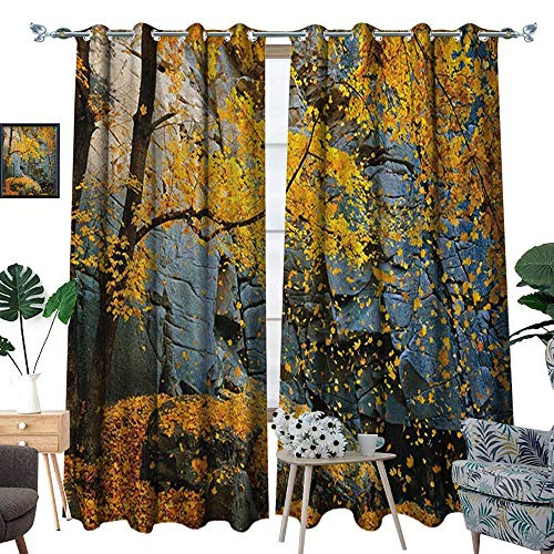 hermal Insulating Blackout Curtain Canadian Maple Trees Falling Leaves Down Surrounded by Scenic Rocks Stones Foliage Patterned Drape for Glass Door W84 x L108 Grey Orange ()