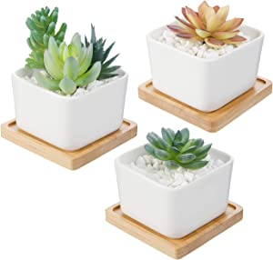 Set of 3 White Ceramic Succulent Cactus Planter Pots with Bamboo Tray for Succulent/Cactus ,3.54 inch Square Design(Plants NOT Included)