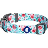 Blueberry Pet 20+ Patterns Spring Scent Floral Collection - Collars, Martingale Collars, Harnesses or Leashes for Dogs…