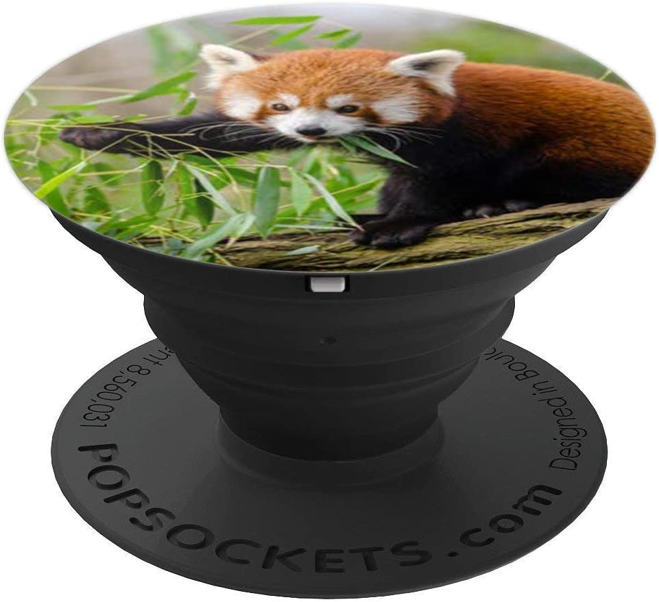 Cute Red Panda Pop Socket Fox Bear Lover Nature PopSockets Grip and Stand for Phones and Tablets