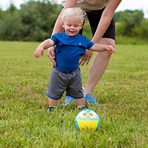 Daball Kid and Toddler Soccer Ball Size 1 and Size 3 Size1, Noah, The Blue Sloth Pump and Gift Box Included