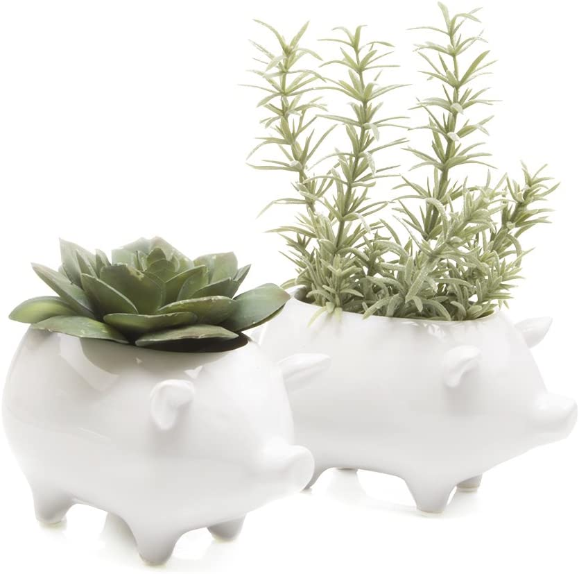 Chive – Set of 2 Animal Pot Pig Shape Succulent and Cactus Planter Pot, 3 Ceramic Air Plant, Flower and Plant Container, Cute Animal Mini Pot for Indoor Outdoor Garden and Home Decor, Bulk White